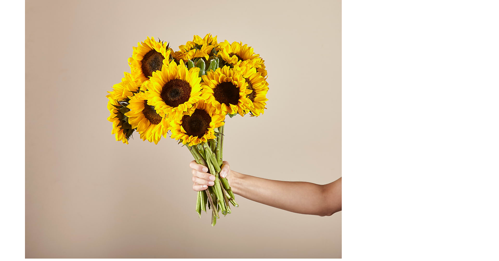 Endless Summer Sunflower Bouquet - Image 2 Of 5