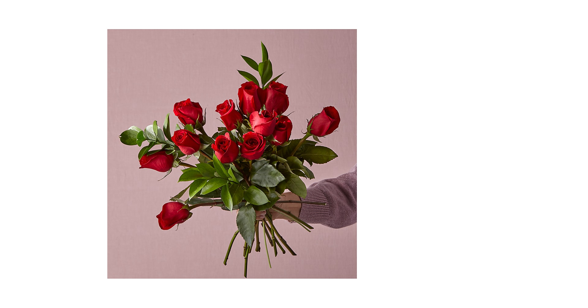 12 Red Roses, No Vase - Image 1 Of 3
