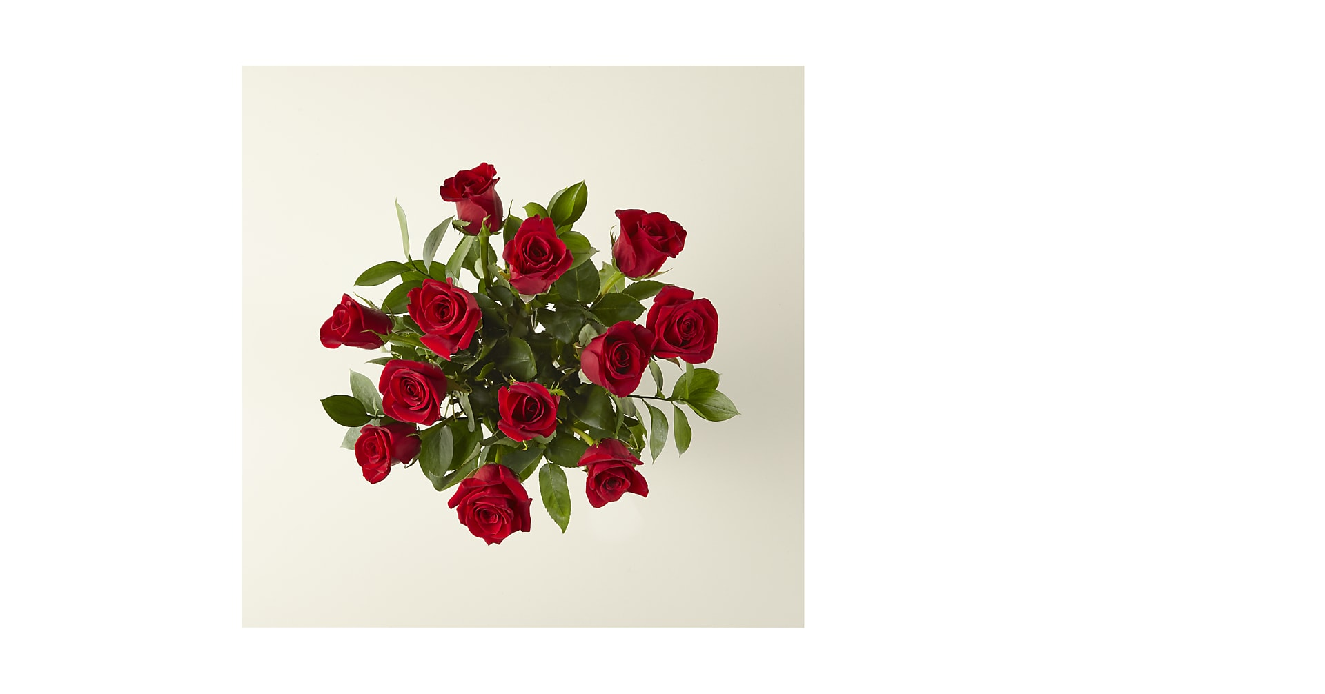 12 Red Roses, No Vase - Image 2 Of 2