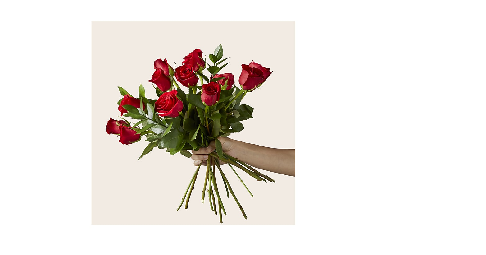 Red Rose Bouquet - Image 2 Of 4