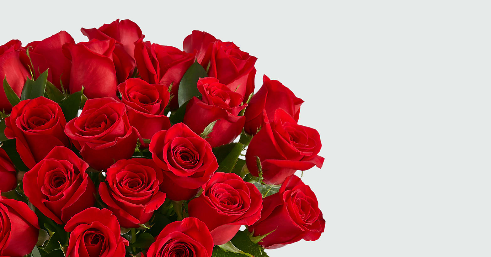 24 Red Roses with Glass Vase - Image 3 Of 5