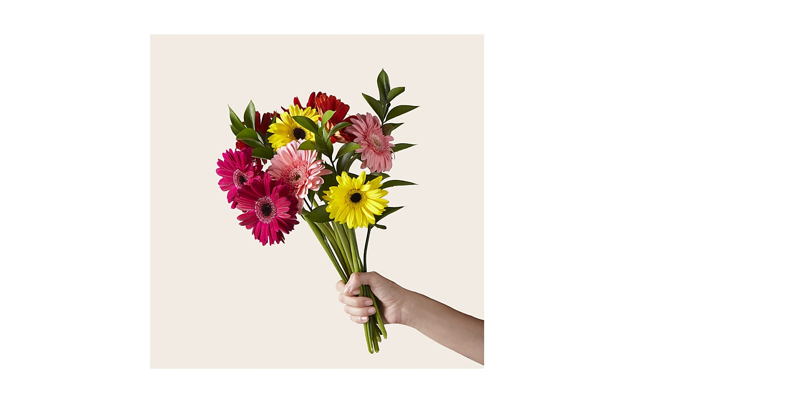 Sunkissed Gerbera Bouquet - Image 1 Of 2