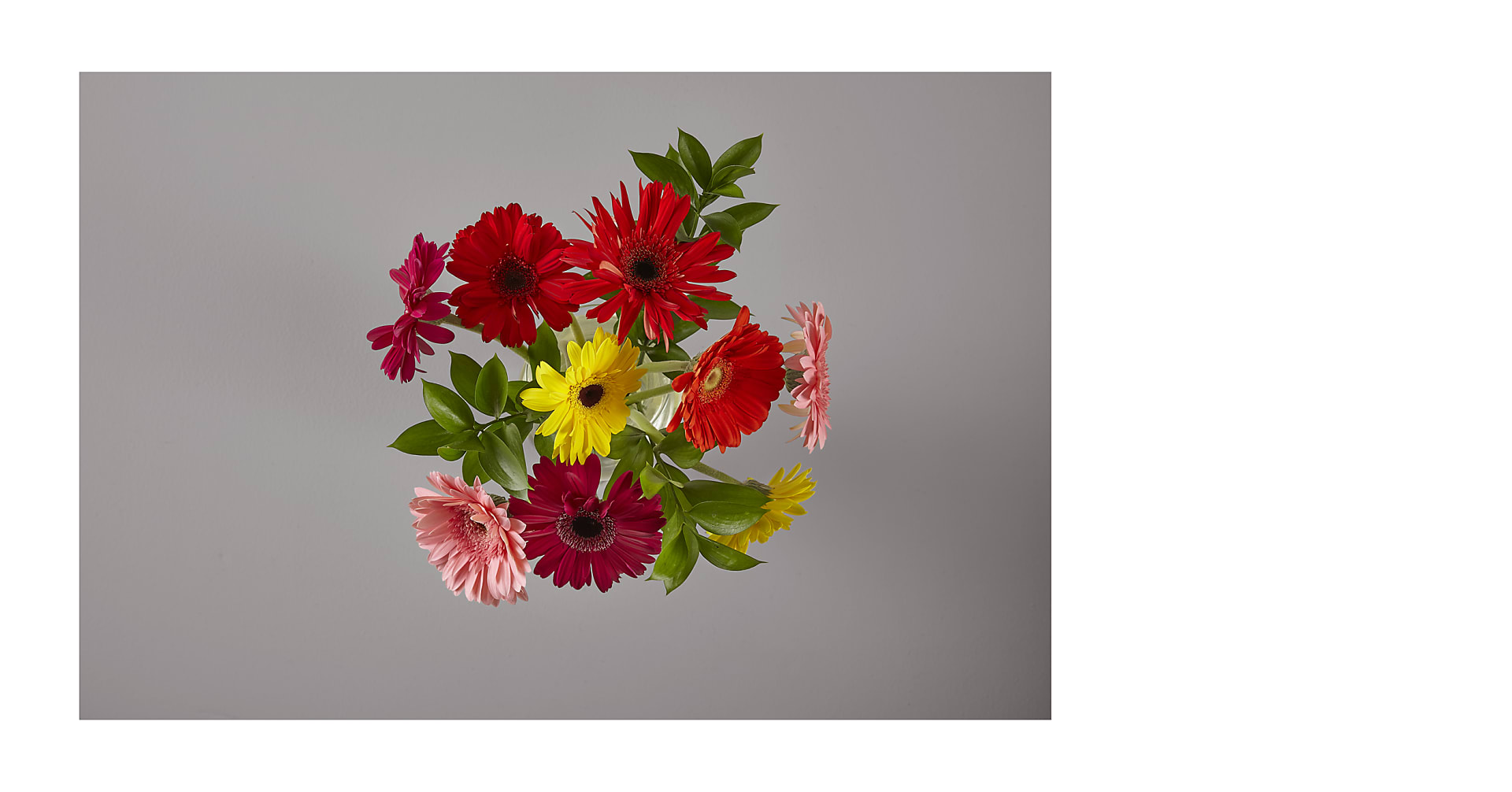 Colorful World Gerbera Daisy Bouquet - Image 2 Of 2