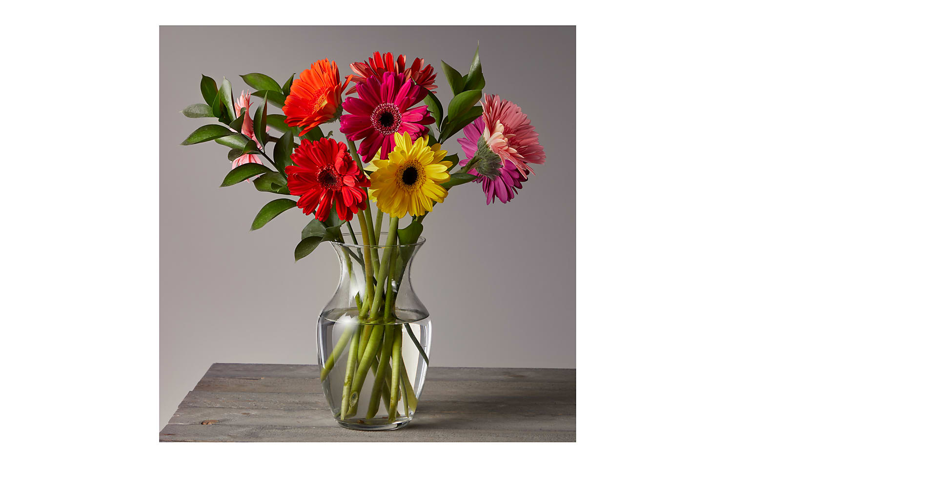 Colorful World Gerbera Daisy Bouquet - Image 1 Of 4
