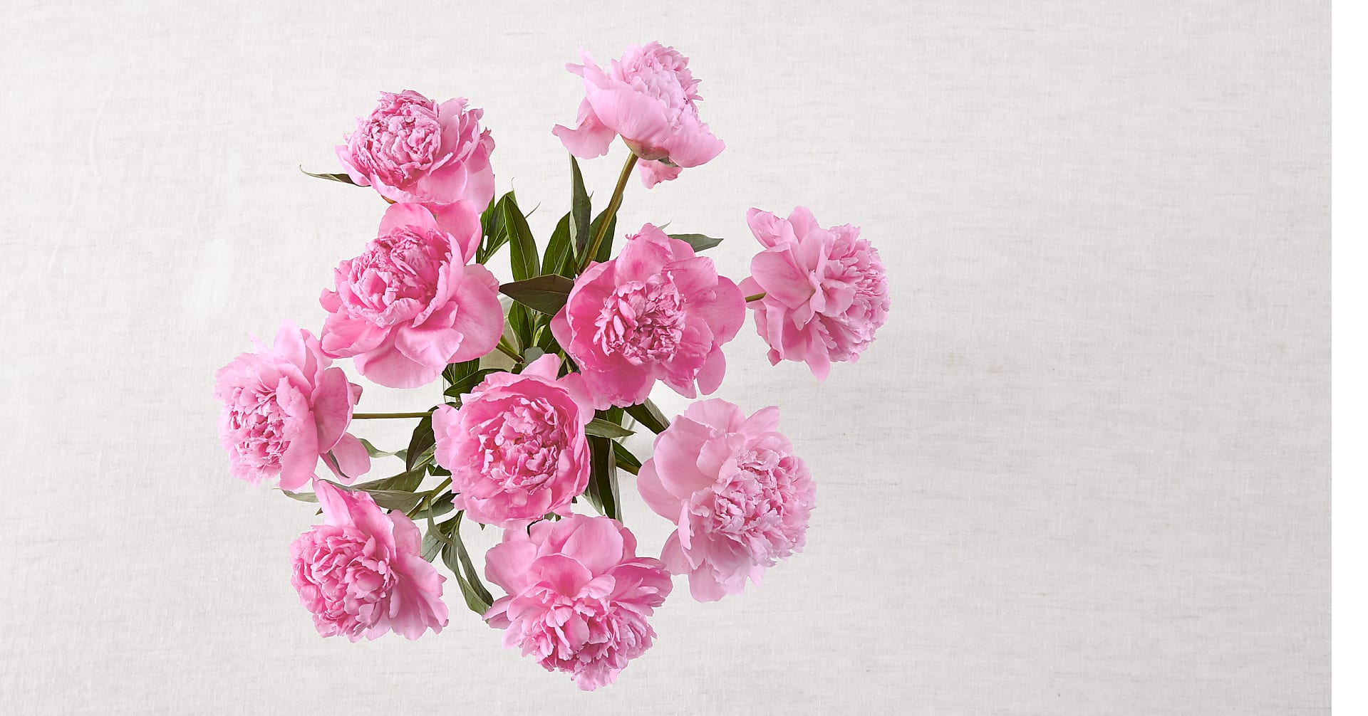 In Full Bloom Peony Bouquet - 10 Stems - No Vase - Image 2 Of 2