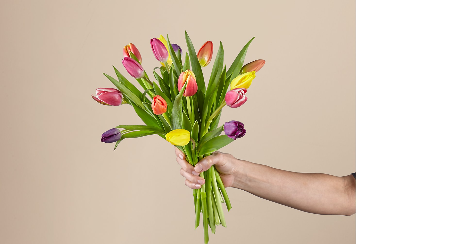 15 Multi-Colored Tulips with Vase - Image 2 Of 2