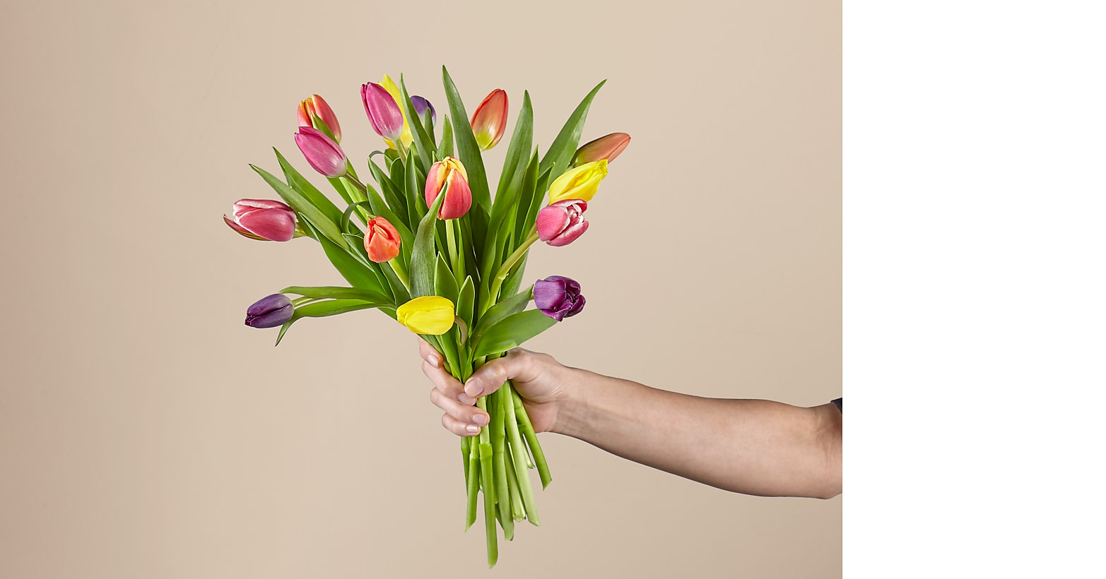 15 Stem Spring Breeze Multicolored Tulip Bouquet With Vase - Image 2 Of 4