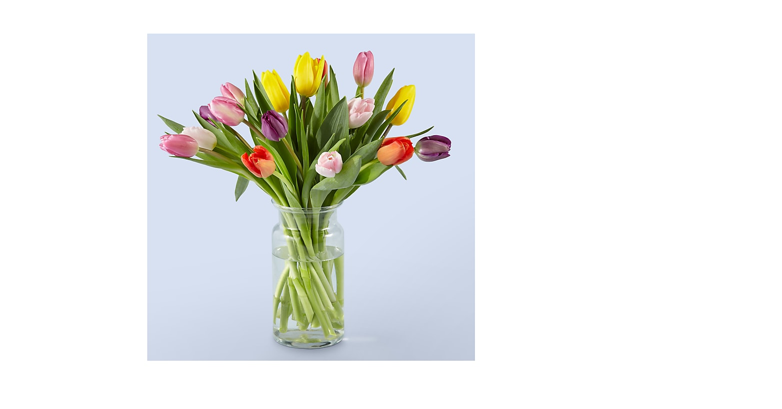 15 Stem Spring Breeze Multicolored Tulip Bouquet With Vase - Image 1 Of 4