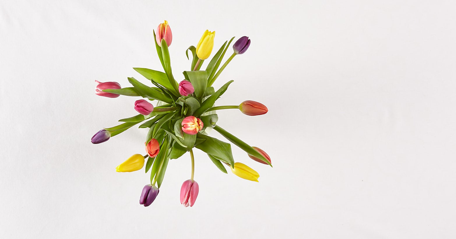 15 Stem Spring Breeze Multicolored Tulip Bouquet With Vase - Image 3 Of 4