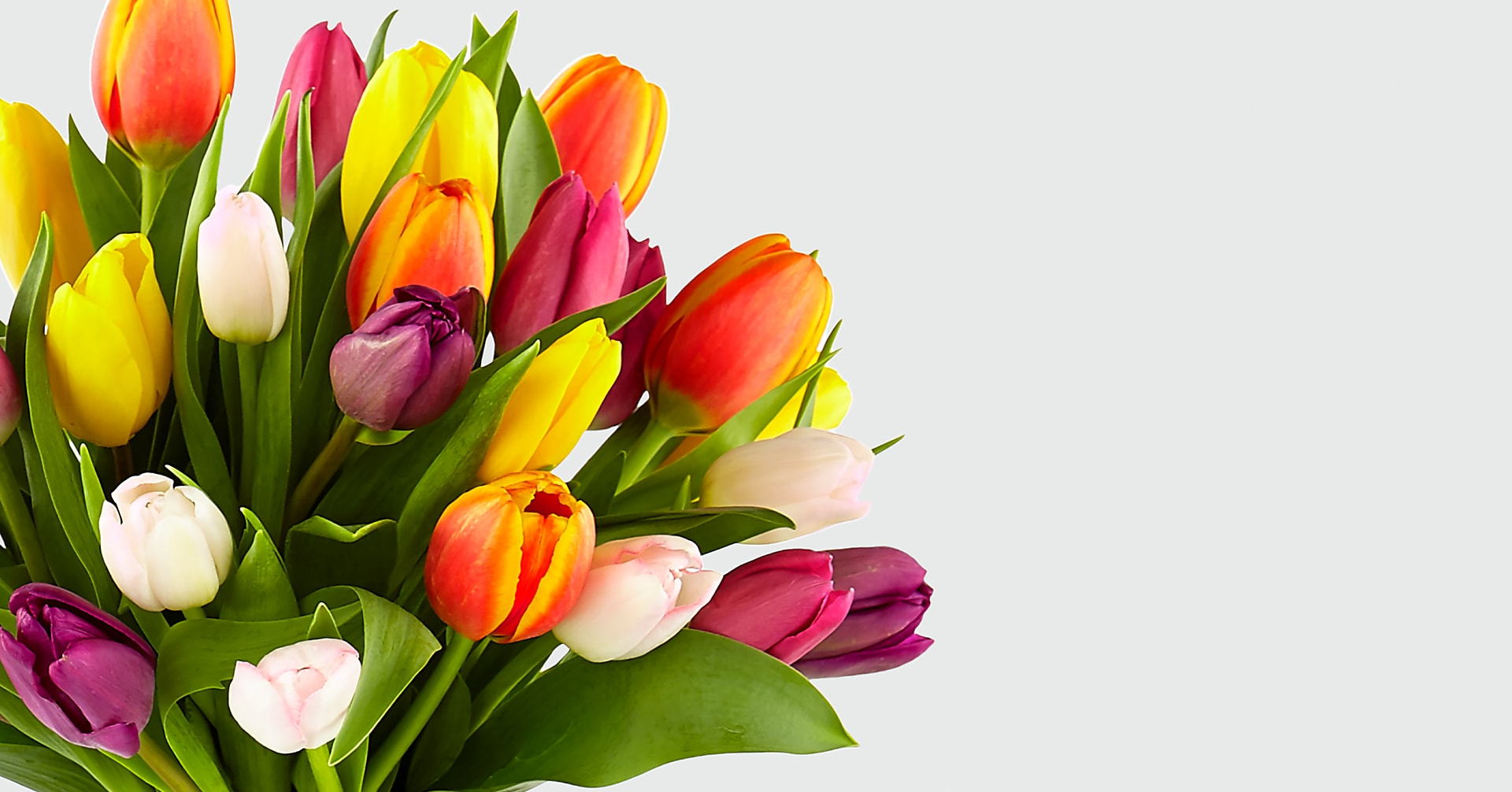 Rush of Color Assorted Tulip Bouquet - 30 Stems - VASE INCLUDED - Image 4 Of 5