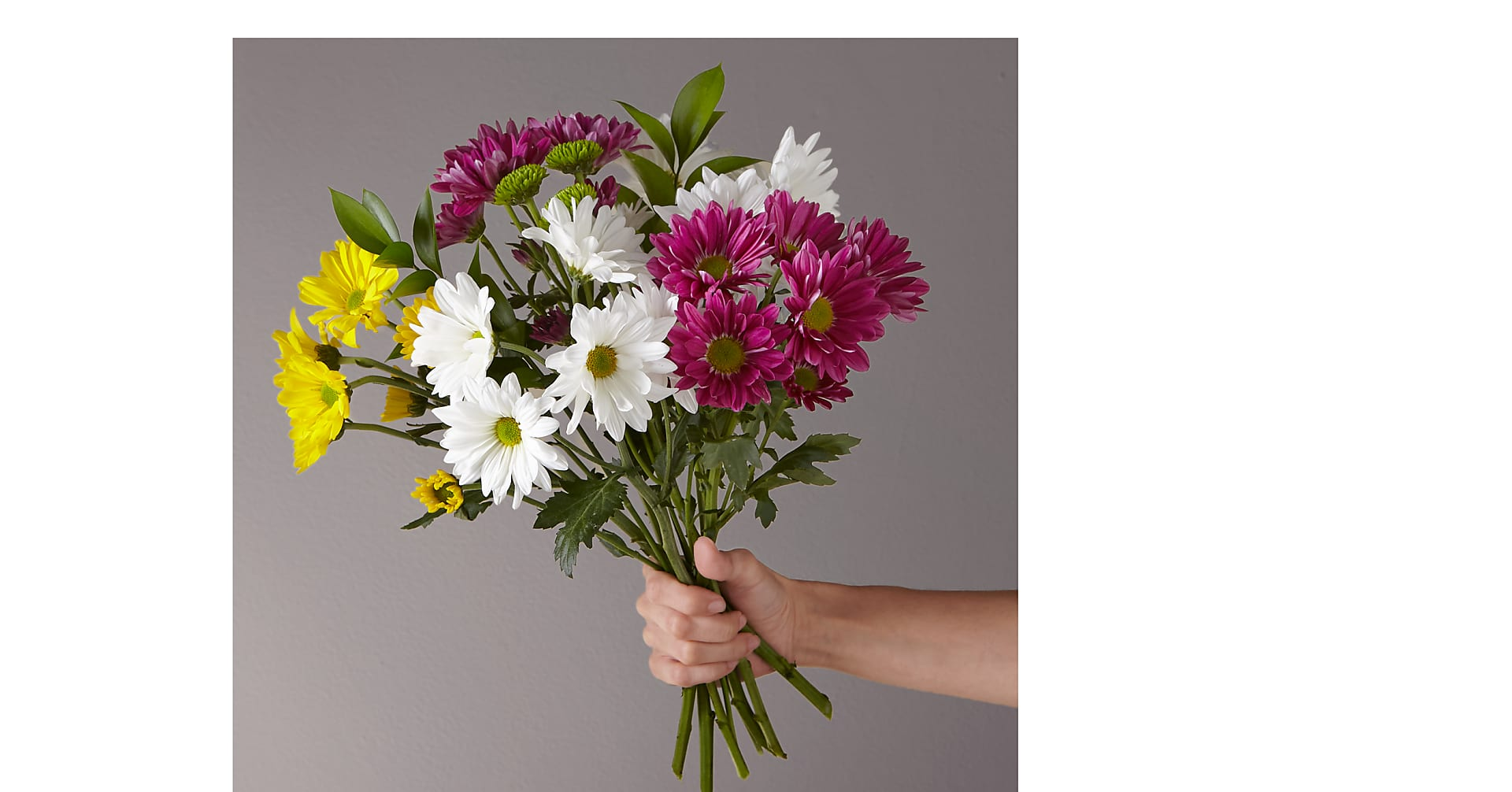 Picnic Party Daisy Bouquet - Image 1 Of 2