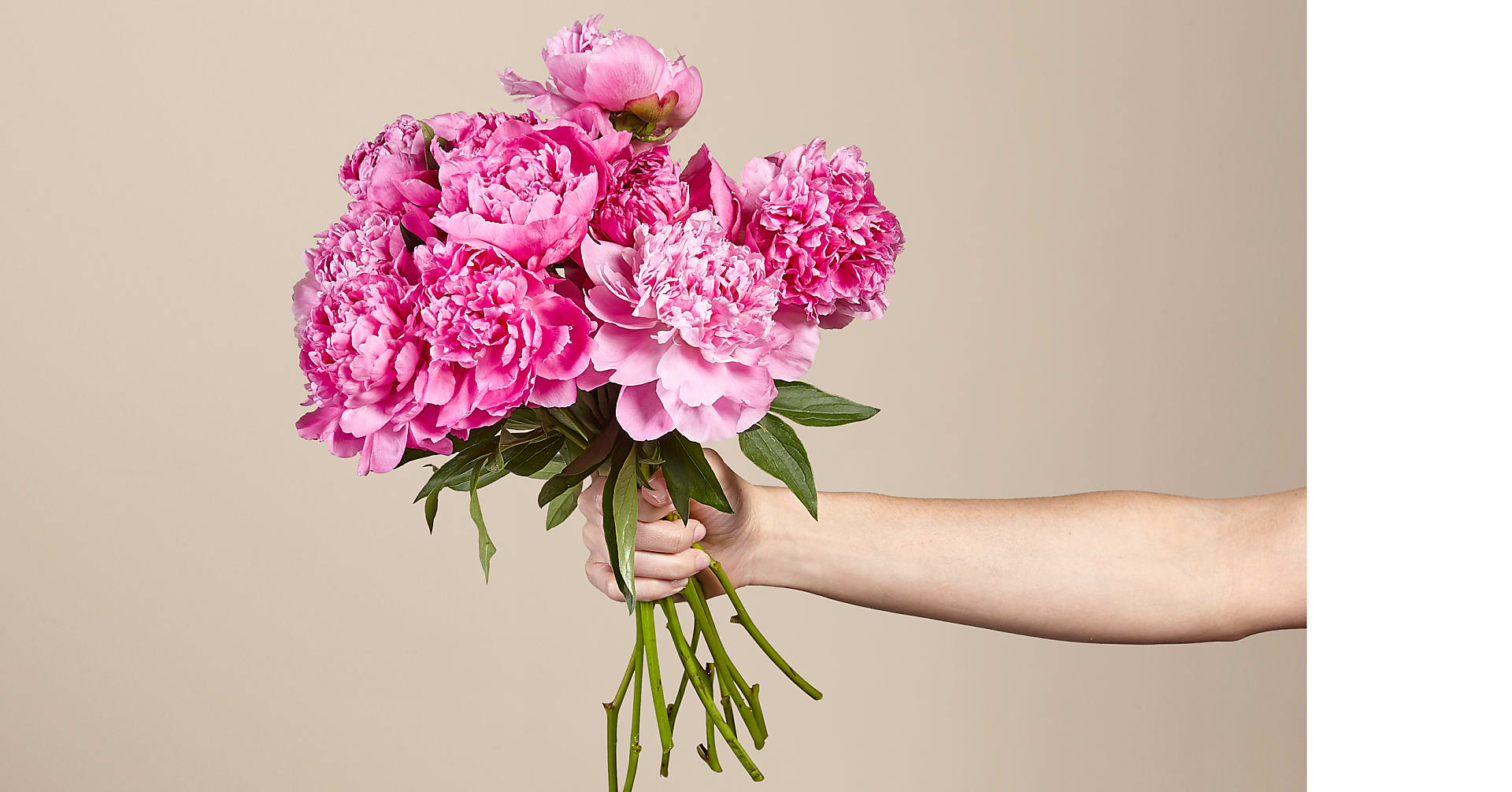 Mother's Day Peony Bouquet - Image 2 Of 3