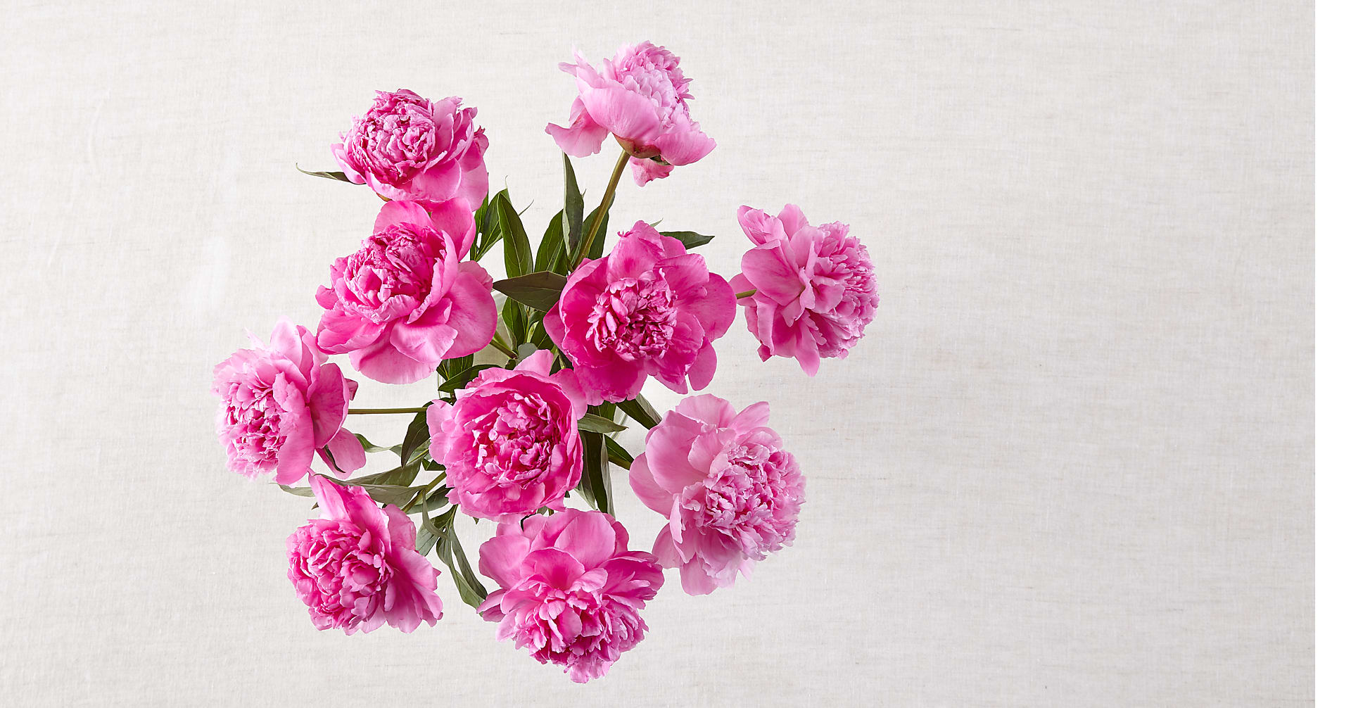 Mother's Day Peony Bouquet - Image 3 Of 3