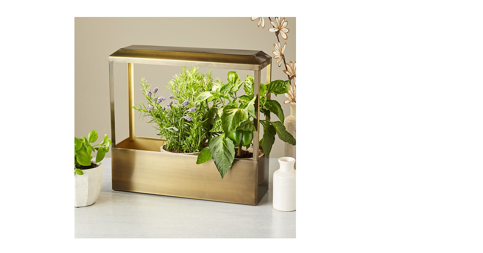Brass Smart Growhouse - Image 1 Of 2