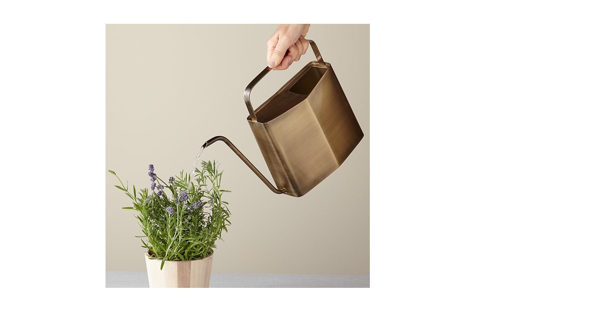 Brass Watering Can - Image 2 Of 2
