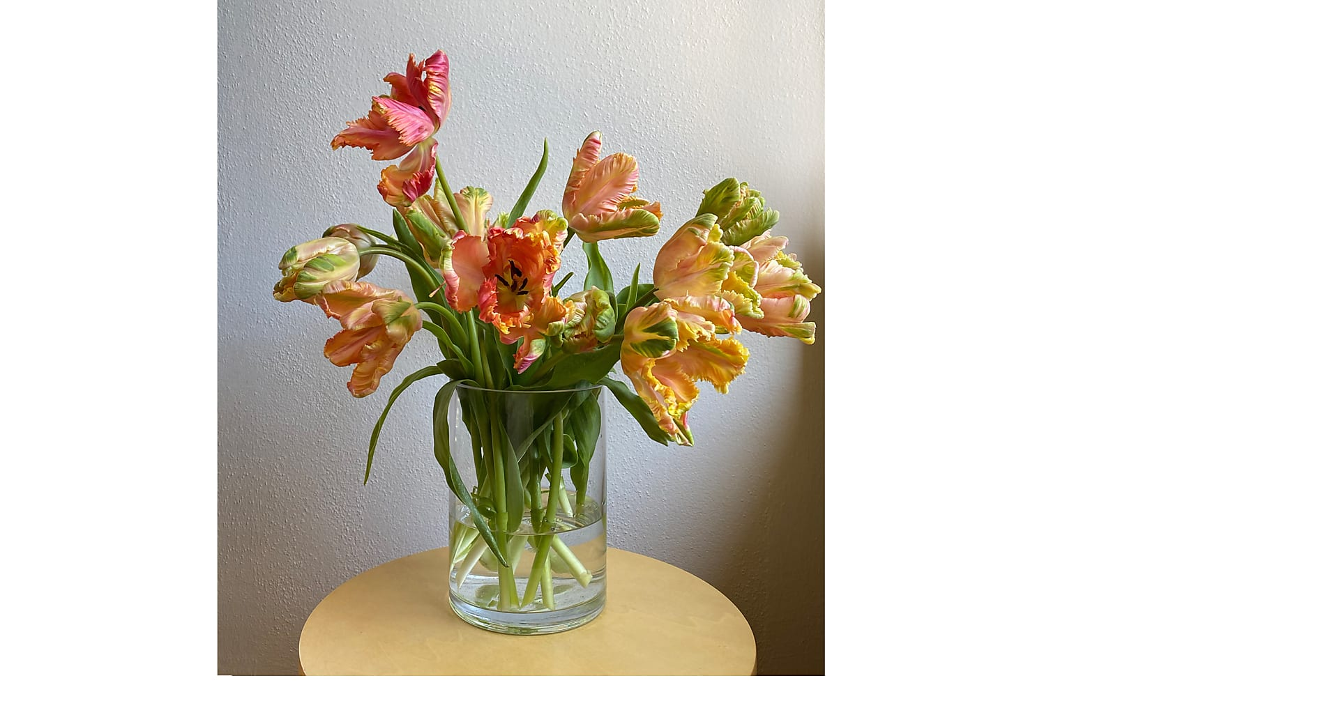 All the Frills Mixed Tulip Bouqet - Image 1 Of 3