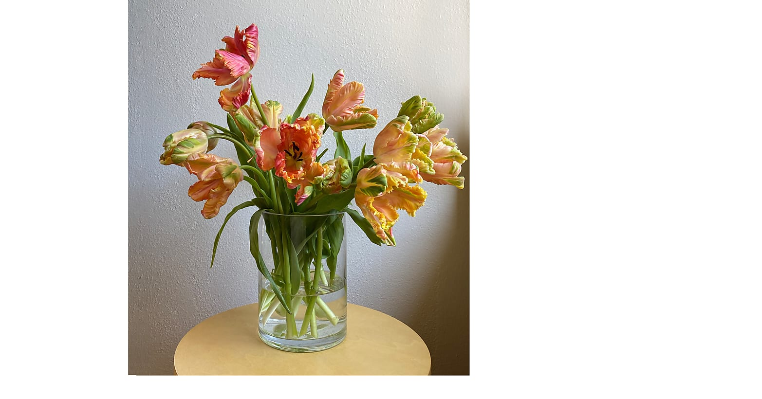 Specialty Tulip Mixed Bouquet - Image 1 Of 4