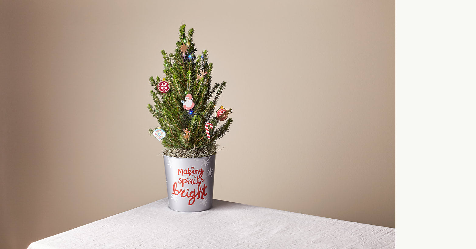 Merry & Bright Tiny Tree - Image 1 Of 3