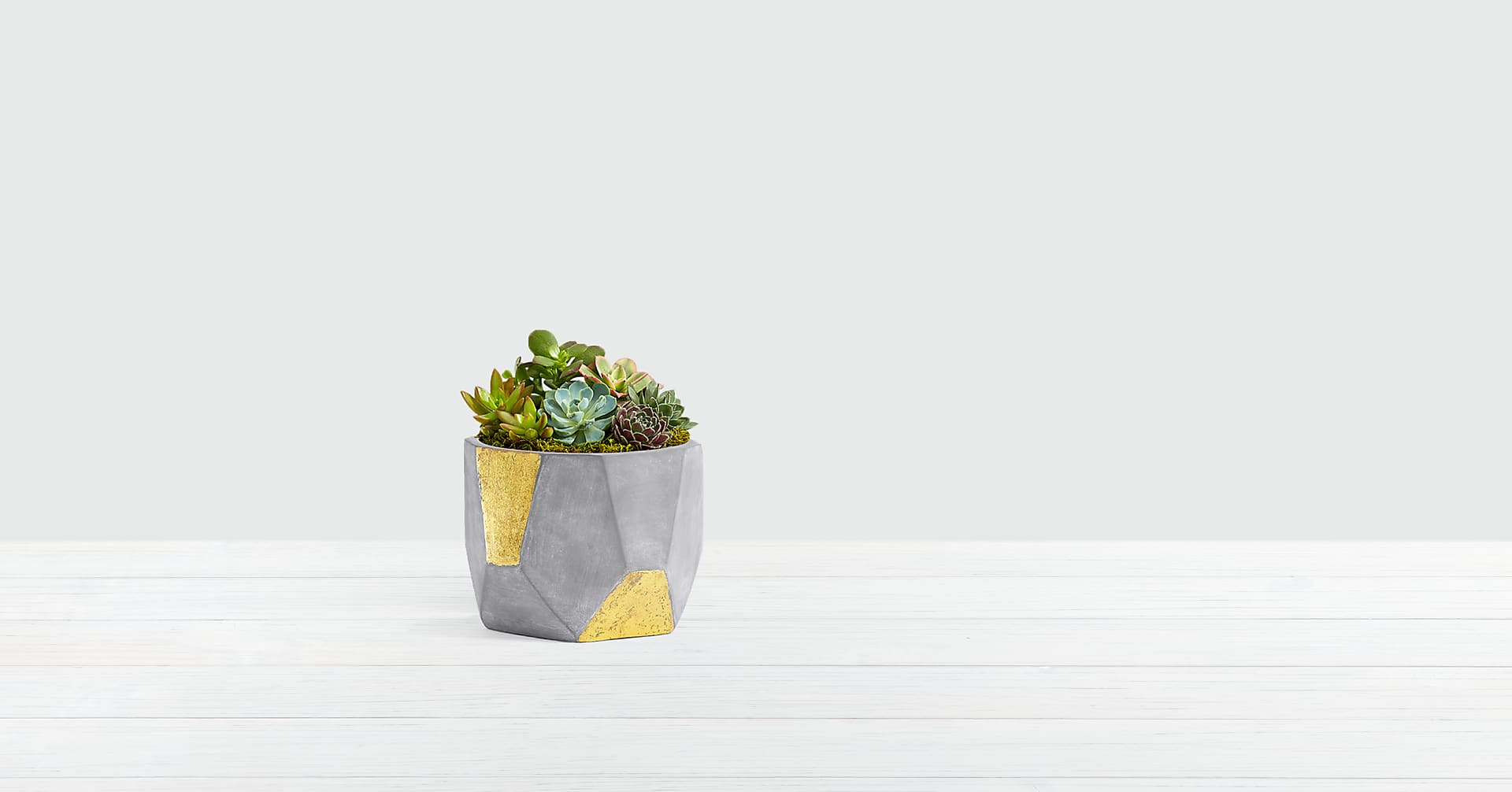 Succulent Garden in Gold & Grey Geo Clay Pot - Image 1 Of 3