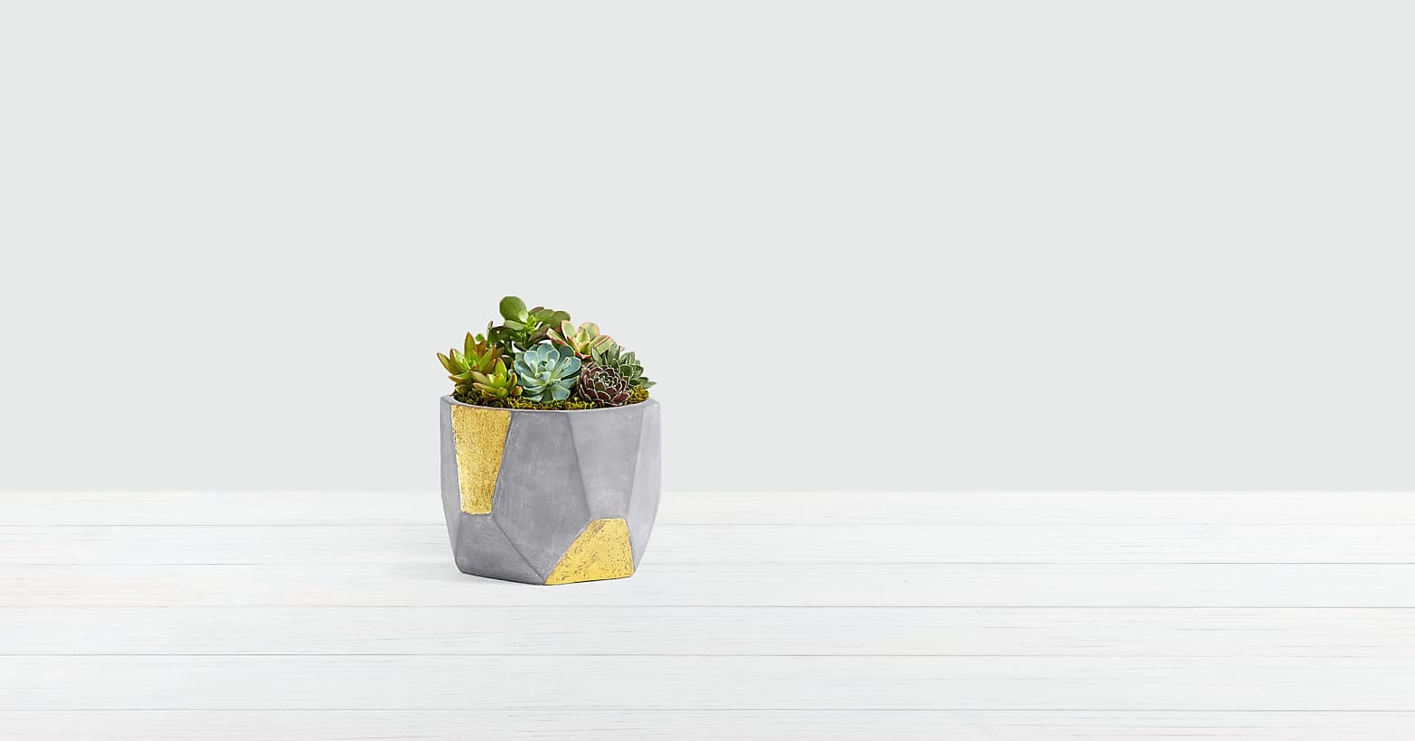 Deluxe Succulent Garden in Rust and Gold Bowl - Image 1 Of 3