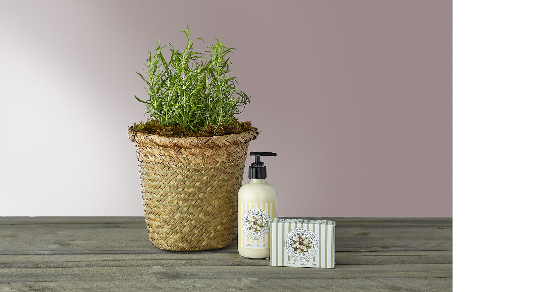 Mother's Day Rosemary Bundle - Image 1 Of 4