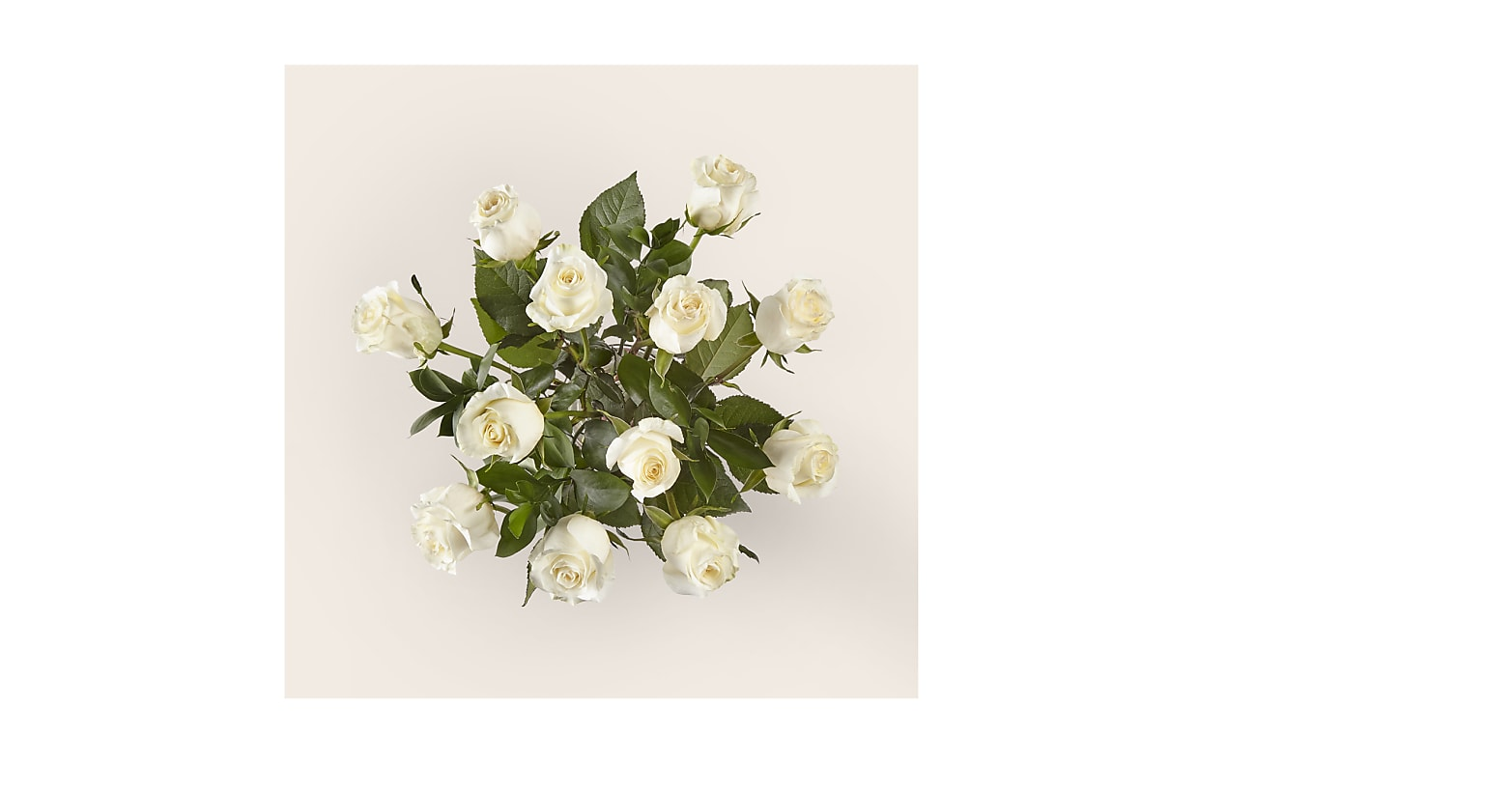 Moonlight White Rose Bouquet - Image 3 Of 3