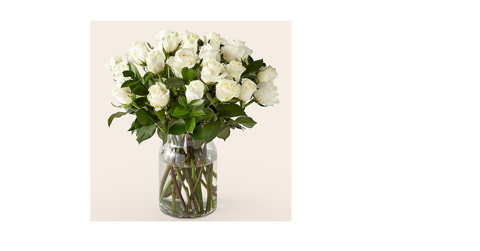 24 Stem Moonlight White Rose Bouquet With Ginger Vase - Image 1 Of 2