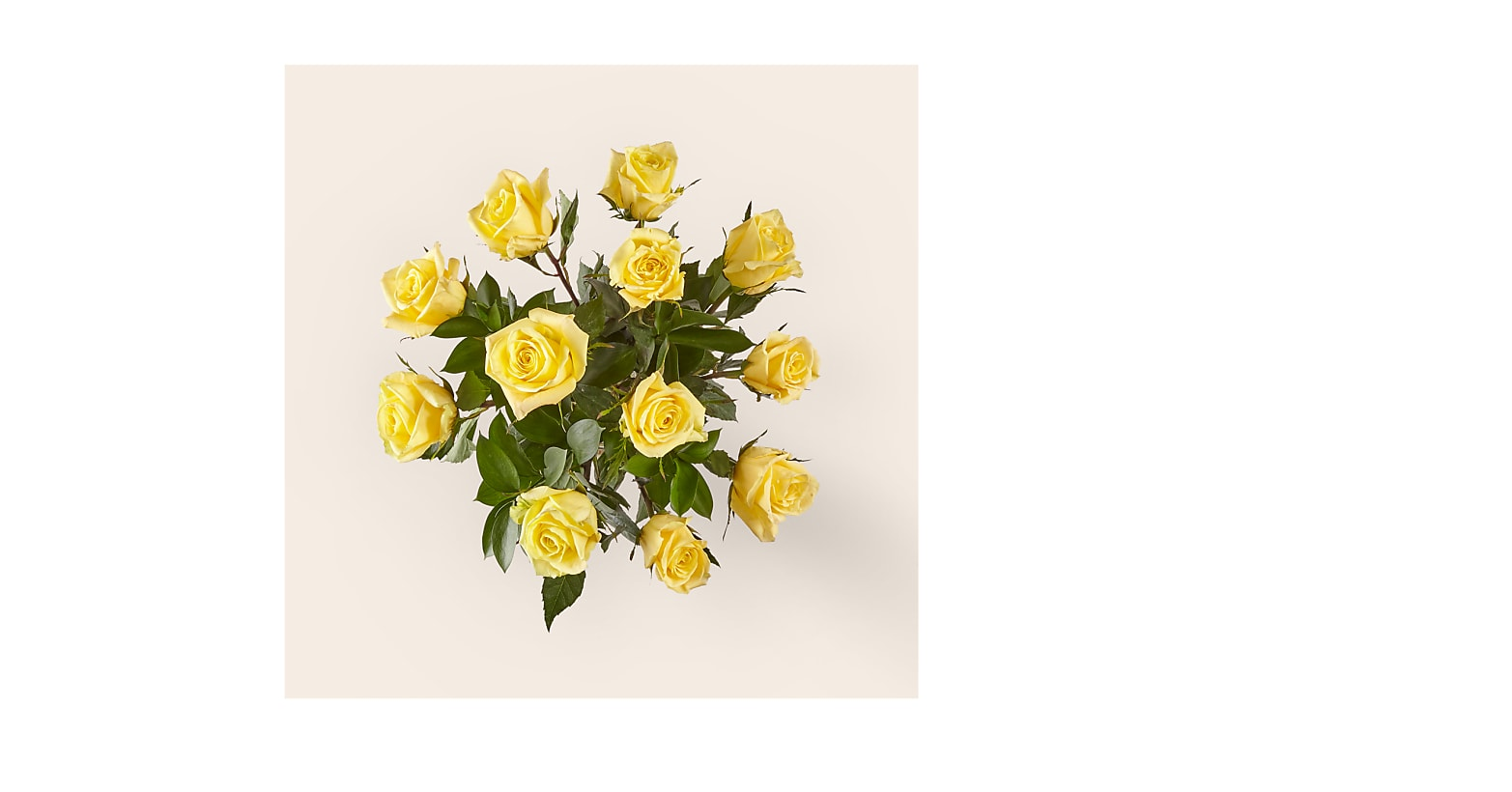 Ray of Sunshine Yellow Rose Bouquet - Image 3 Of 3