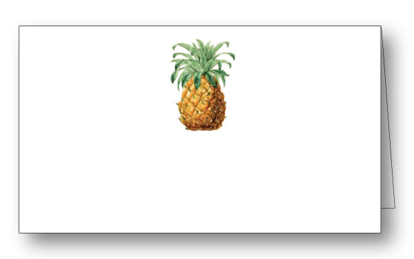 Watercolor Pineapple PLC