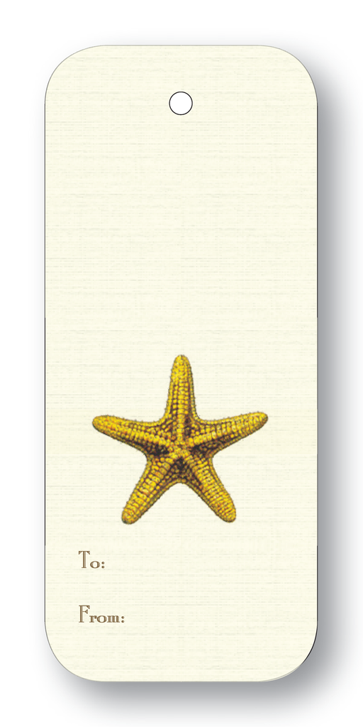 Starfish To & From