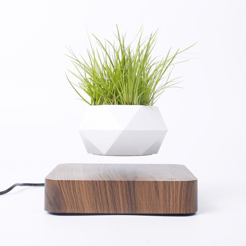 MAGNETIC LEVITATING PLANT