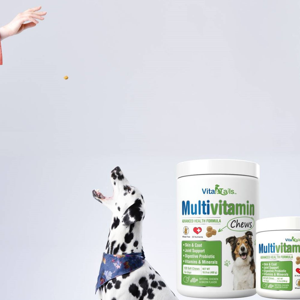 Natural Cure Labs Launches New Pet Nutrition Line: VitaTails
