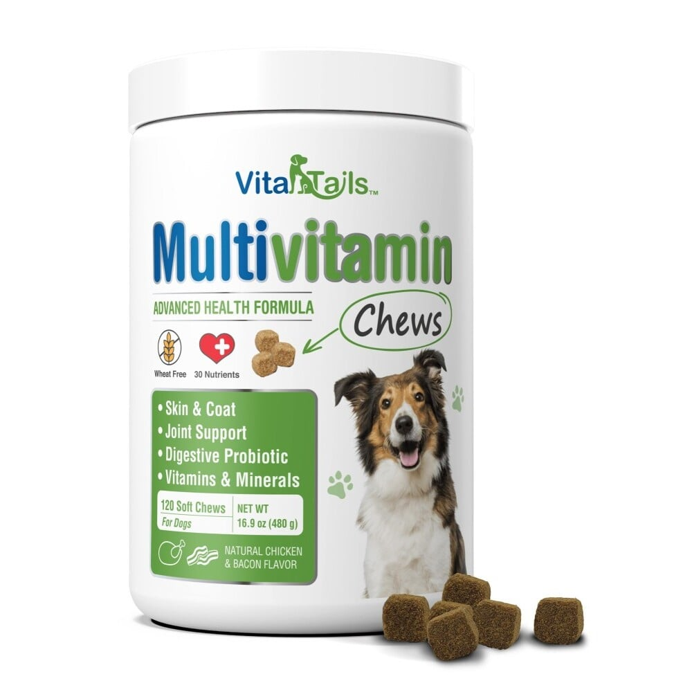 Multivitamin Soft Chews for Dogs - 120 Count