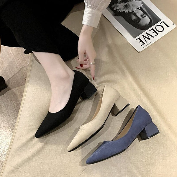 Fall 2021 Women Pointed Shallow Mouth Suede Thick Heel Single Shoes Comfortable Mid-heel Fashion Mature Professional Work Shoes