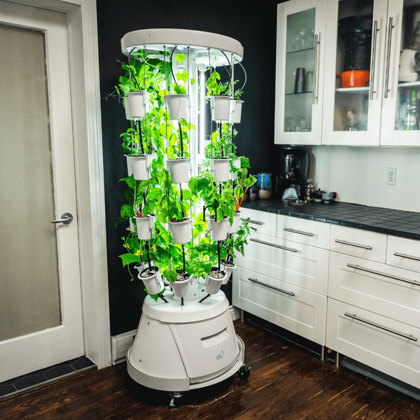 Vertical Hydroponic system Indoor Garden Tower