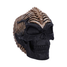 Load image into Gallery viewer, Spine Head Skull 18.5cm
