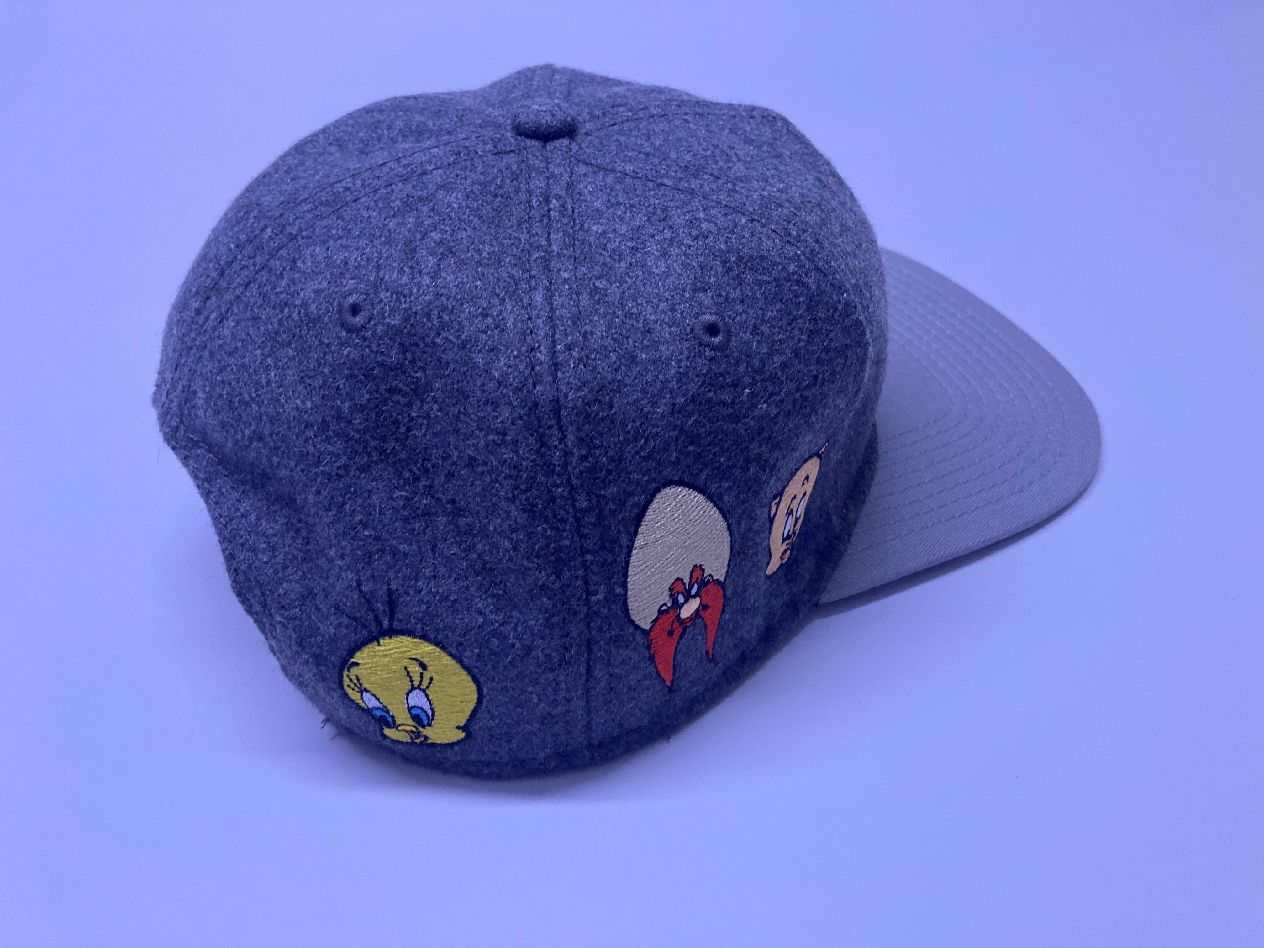 Looney Tunes Heather Plain Logo Wrap around Vintage Snapback