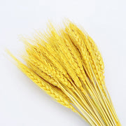 Bulrush Natural Dried Flowers Small Pampas Grass Phragmites DIY Artificial Flowers Plants For Decor Home Wedding Decoration