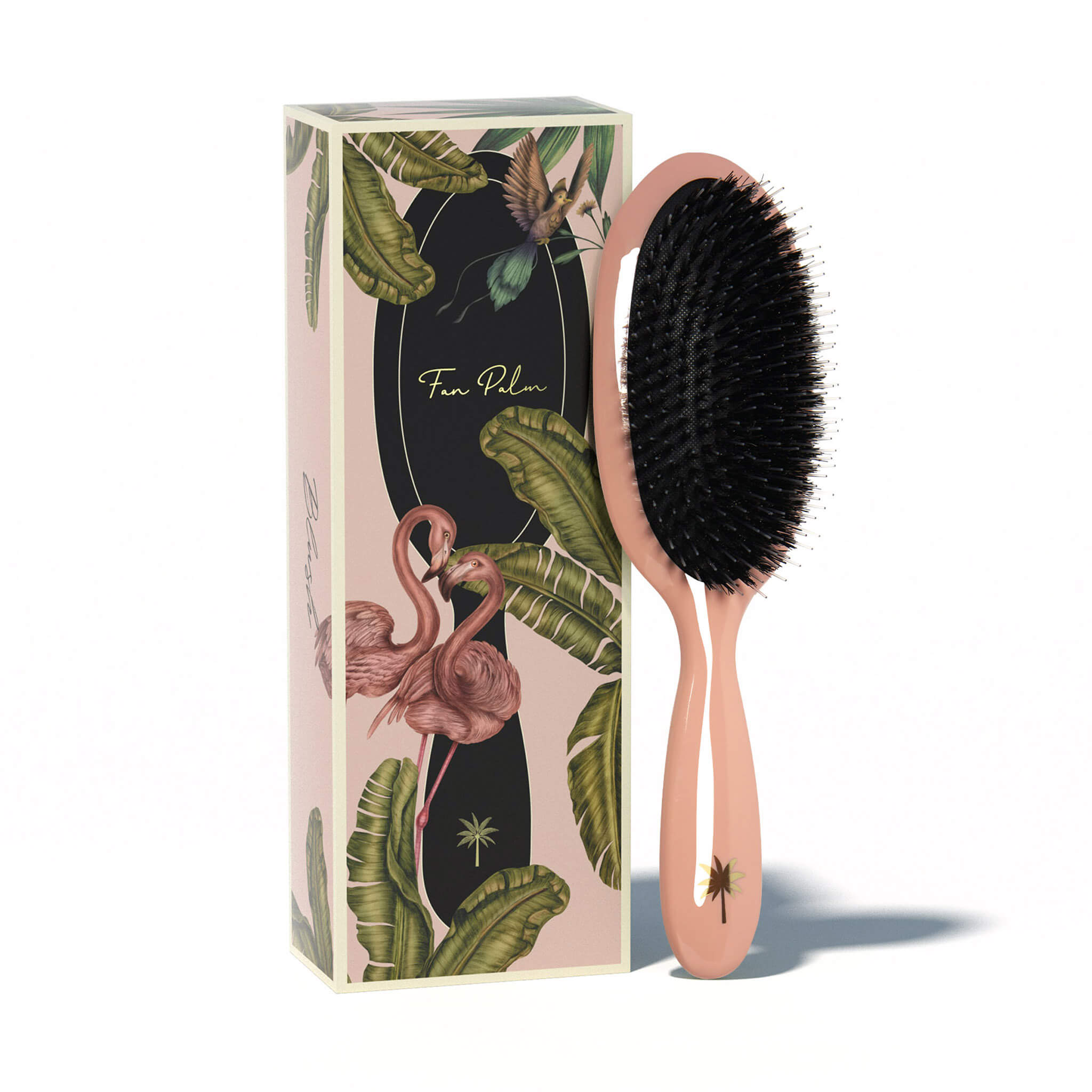 Fan Palm Hair Brush - Blush - Medium