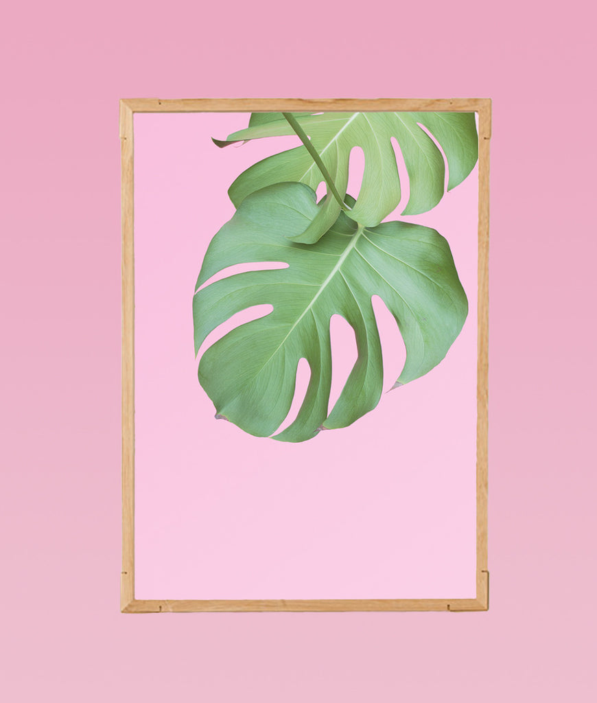 https://www.waldraud.com/products/pinkplantastik-no-1-50x70-cm