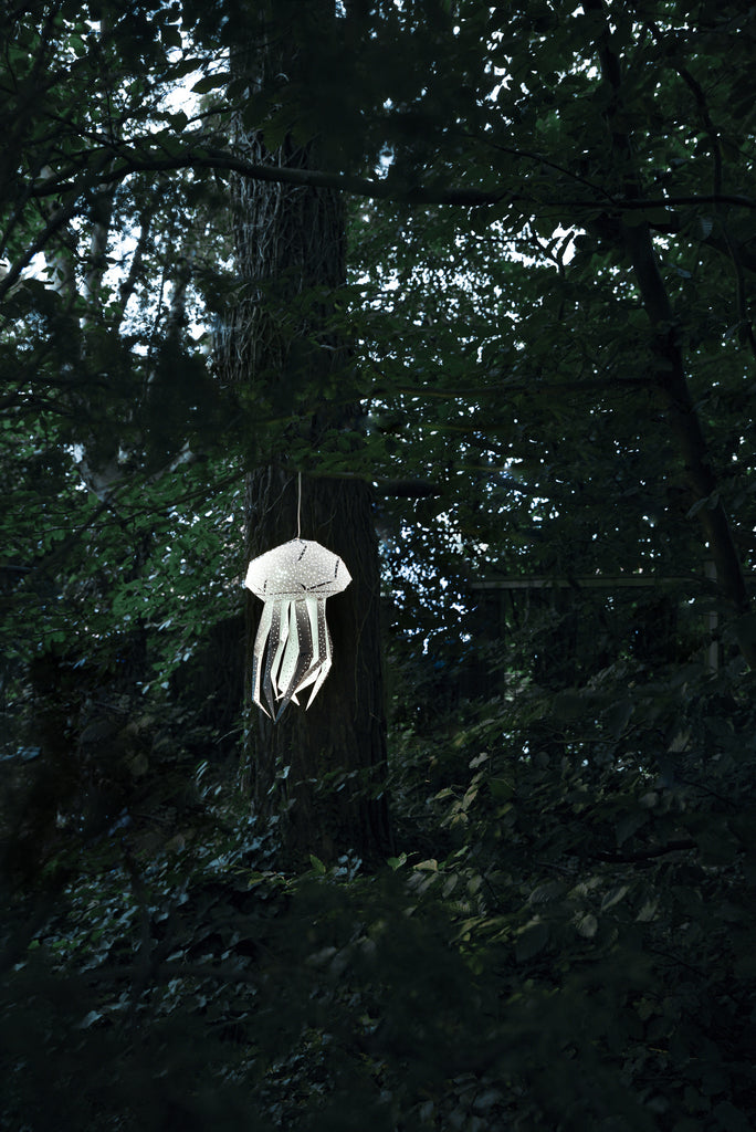 The Jellyfish Lantern in the Woods