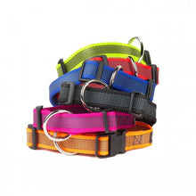 Load image into Gallery viewer, Colour & Gray® Webbed Dog Collars