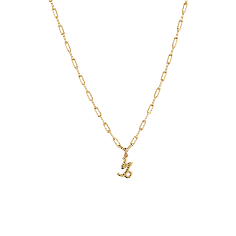 zodiac necklace, horoscope sign