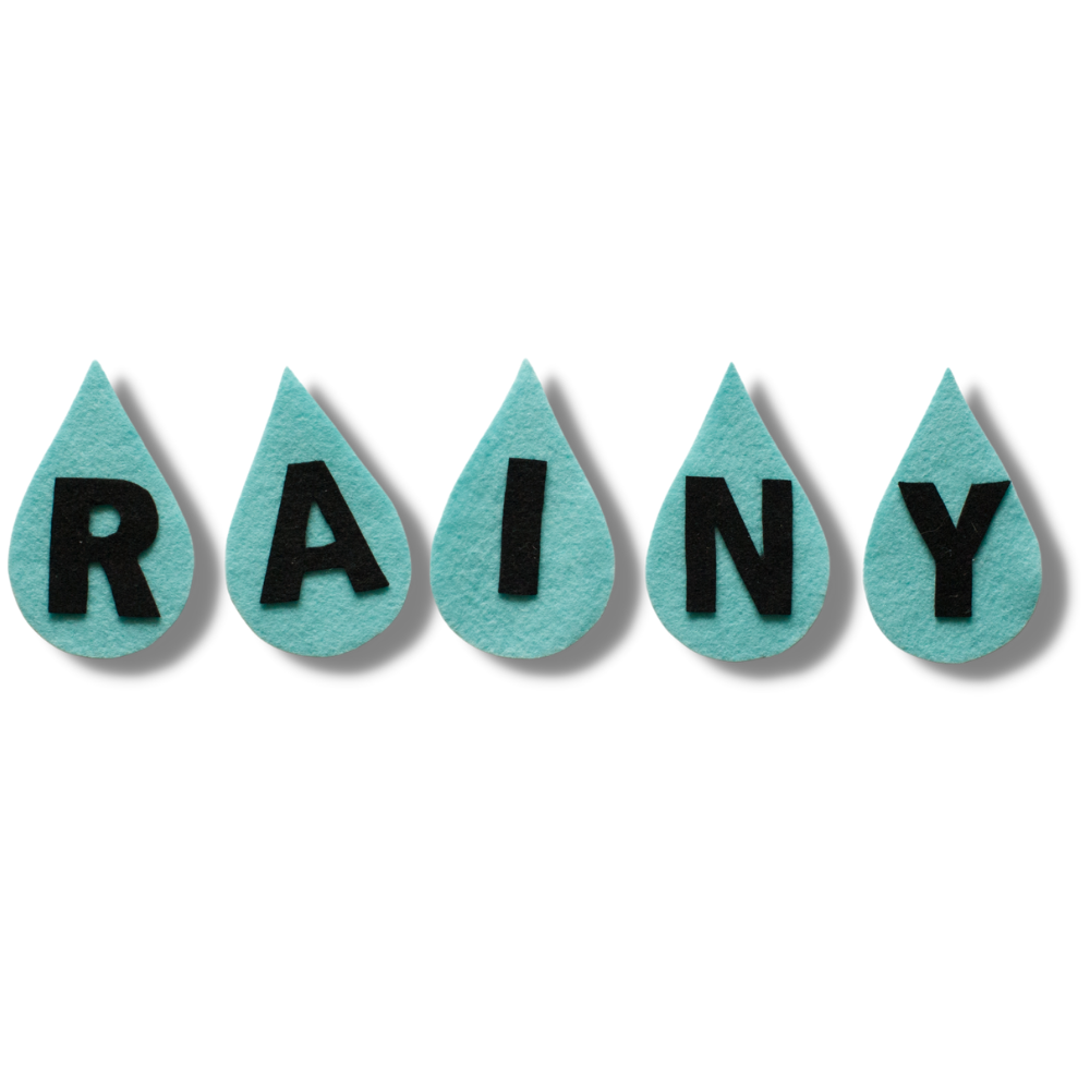 RAINY R-A-I-N-Y Weather BINGO Song Felt Set Pattern