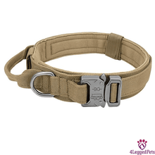 Load image into Gallery viewer, 4LEGGEDPETS Collar / Leash Set Beige / M