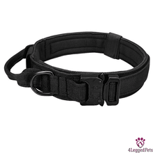 Load image into Gallery viewer, 4LEGGEDPETS Collar / Leash Set Black / XL