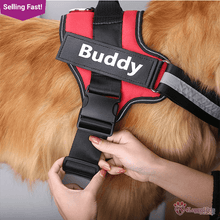 Load image into Gallery viewer, 4LEGGEDPETS Harness Vest