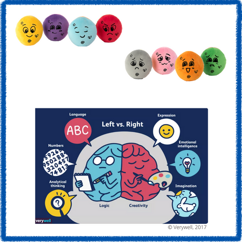 Feeling dolls with picture of the brain and their functions