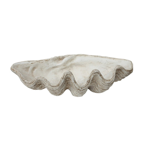 White Magnesia Seashell Decoration