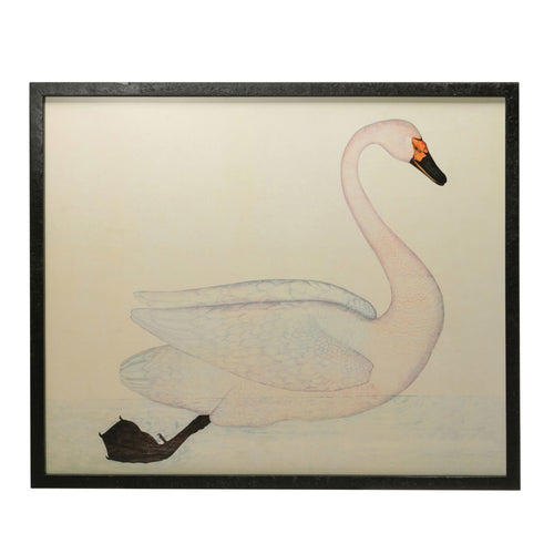 Wood & MDF Framed Wall Décor with Vintage Reproduction Swan Image, White Default Title